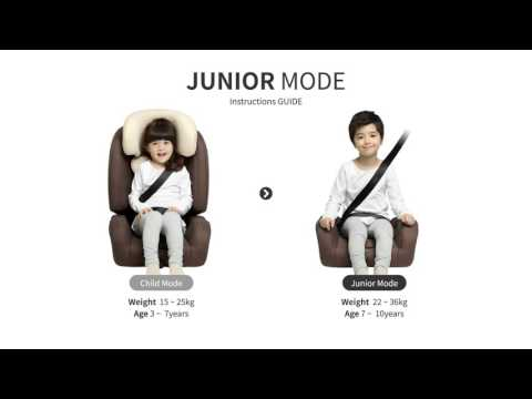 D-guard Toddler (D-1004) Car Seat Install..
